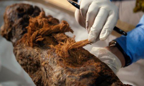 Mummy's older than we thought: new find could rewrite history
