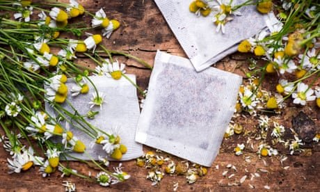 Camomile lawn? Begin with a teabag