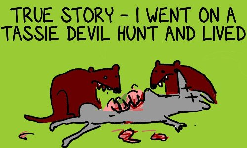 Into the wilds of the Huon Valley to track and trap the mysterious Tasmanian devil