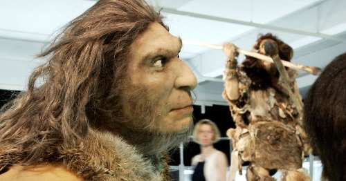 Did Modern Humans and Neanderthals Really Meet in the Negev?