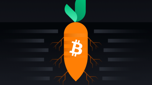 A Makeover that Changes Everything: The Bitcoin Taproot Update