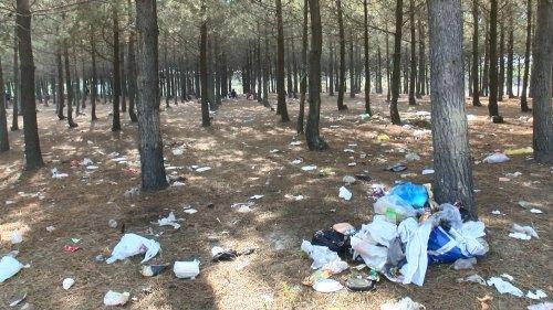 Sarıyer'de piknikçilerden geriye çöp yığınları kaldı
