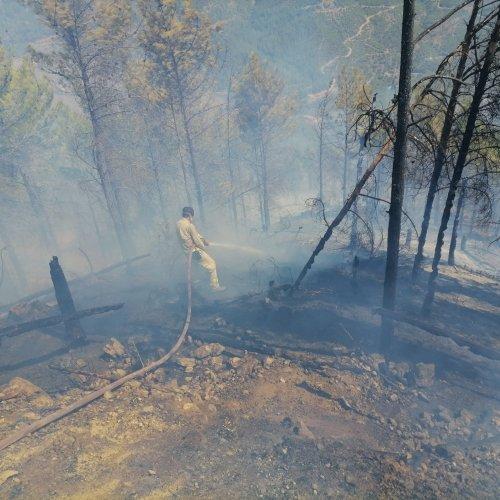 Anamur'daki orman yangınına müdahale ediliyor