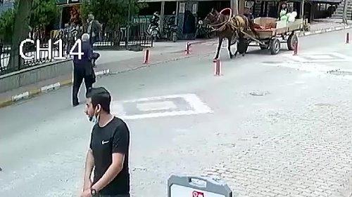 84 yaşında adamın üzerinden at arabası geçti