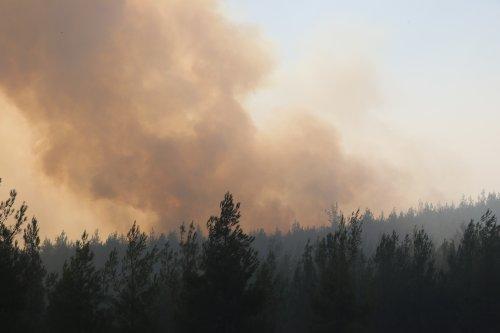 2 gündür kontrol altına alınmadı: Kozan'daki orman yangınına müdahale sürüyor