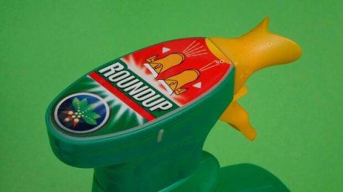 Prüfbehörden stützen EU-Neuzulassung von Glyphosat – Bayer begrüßt Ergebnis, Umweltschützer sind entsetzt