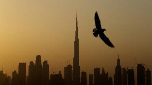 Saudi-Arabien, Katar und Co.: Hohe Impfquoten und Milliarden in neue Technologien: Die Golfstaaten wollen schnell aus der Krise