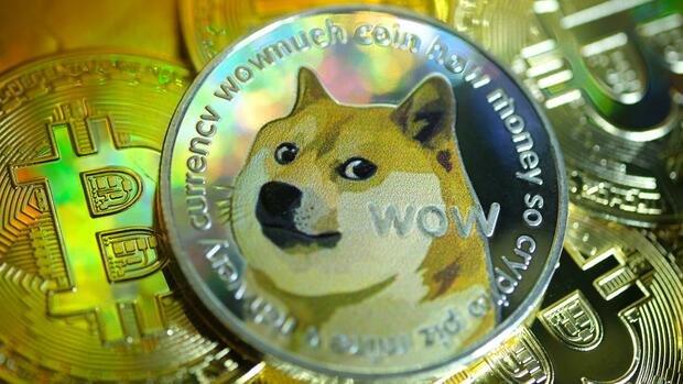 Baby Doge Coin-Kurs verdoppelt sich nach Musk-Tweet