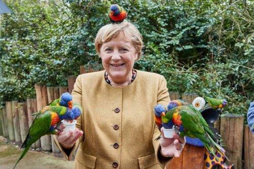 Angela Merkel: Meistüberschätzte Politikerin der Welt