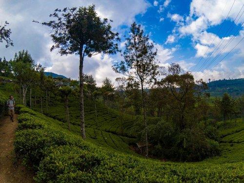 Nuwara Eliya, Sri Lanka: cidade europeia em território cingalês