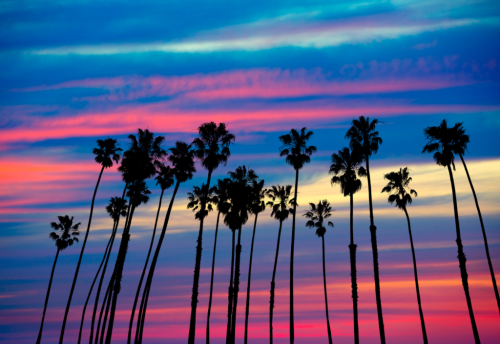 California and Psychedelics: Getting Closer