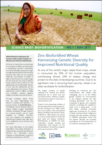 Zinc-Biofortified Wheat: Harnessing Genetic Diversity for Improved Nutritional Quality