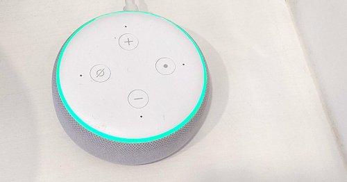 Alexa leuchtet grün: Das bedeutet der Lichtring - DAS HAUS