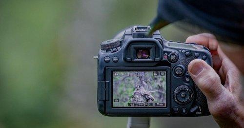 Spiegelreflexkameras: Testsieger der Stiftung Warentest - DAS HAUS
