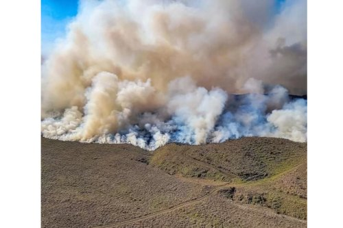 Four-mile long wildfire prompts evacuations in Hawaii