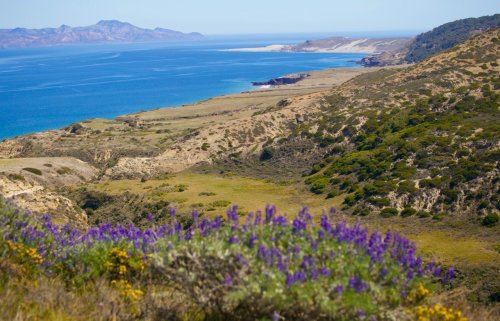 I visited Calif.'s most underrated national park. It was magical.