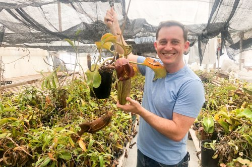 This Bay Area man left tech to sell carnivorous plants