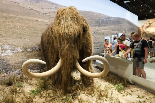 SF hippie futurist wants to make a real-life 'Pleistocene Park'