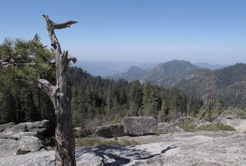 Hiker still missing in Sequoia National Park