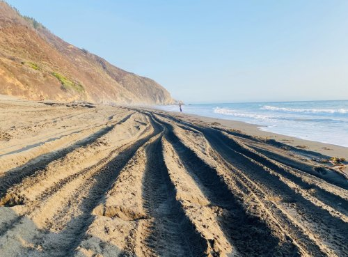 On the Lost Coast, a Calif. state park has become the Wild West