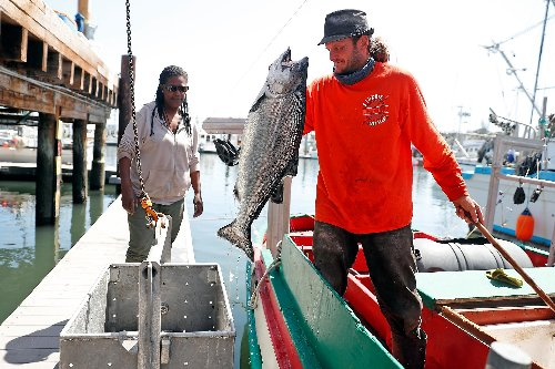 Fishing limits, choppy weather gets California salmon season off to slow - and expensive - start