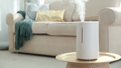When You Start Using A Humidifier, This Is What Happens To Your Body