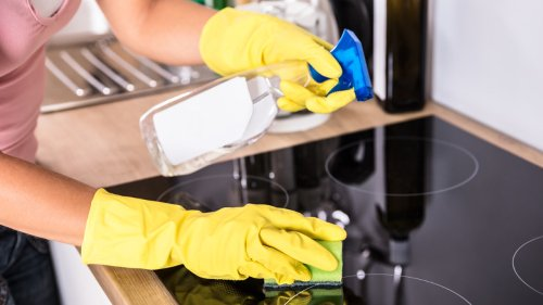 How Often You Should Really Replace Your Kitchen Sponge