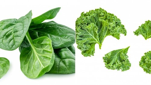Spinach Vs Kale: Which One Is Better For You?