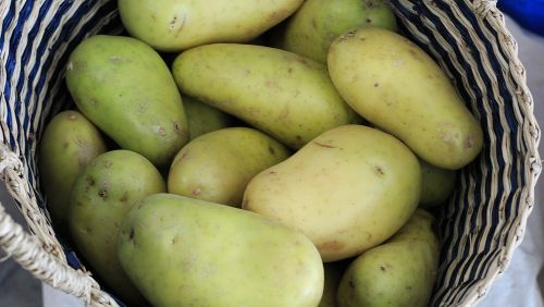 Is It Safe To Eat Green Potatoes?