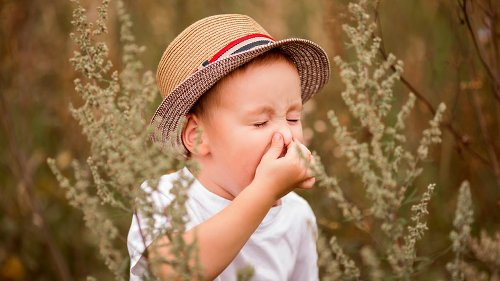 The Real Reason Your Allergies Seem Worse This Year