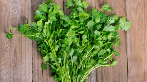 The Real Reason Some People Think Cilantro Tastes Like Soap