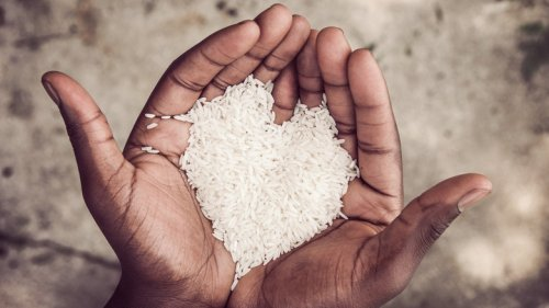 Brown vs. white rice: Which one is better for you?