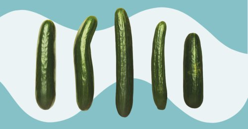 There Are 20 Different Penis Types — and They're All Normal!