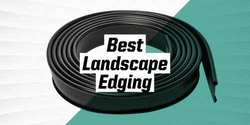 The 9 Best Landscape Edging Options for Your Lawn and Garden