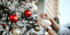 Discover christmas tree decorations