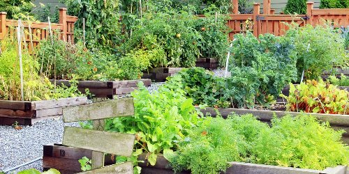 16 Free Garden Plans and Plant Lists You Can Use At Home