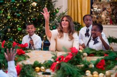 Discover white house christmas decorations