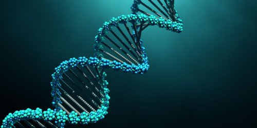 Scientists Say They've Finally Sequenced the Entire Human Genome. Yes, All of It.