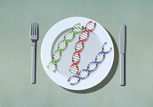 Dieta genética para perder peso, ¿funciona? Esto es lo que he aprendido después de probarla
