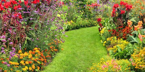 Autumn redesign: 8 step guide to perfect garden borders, from plants to shade to style