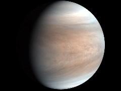 Discover venus planet