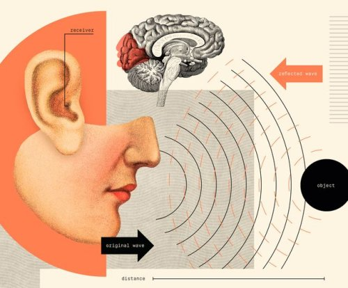 Humans Could Develop a Sixth Sense, Scientists Say