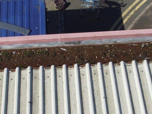Case Study 3 - Cut Edge Corrosion