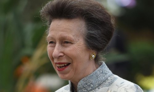 Princess Anne beams as she poses in camouflage for new outing