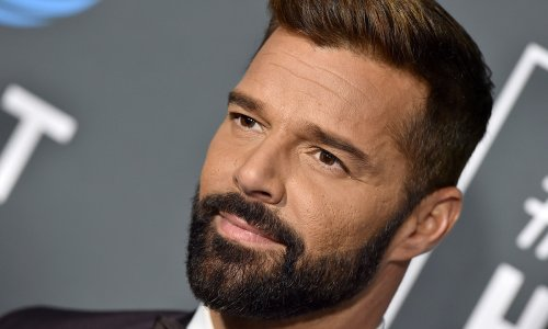 Ricky Martin shares rare picture of twin son as they relax on private jet