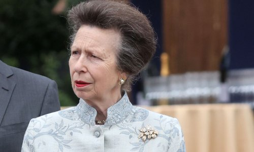 Princess Anne looks blooming lovely in floral embroidered coat dress at the Chelsea Flower Show