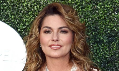 Shania Twain, 55, looks unreal in corset and fishnets as fans react