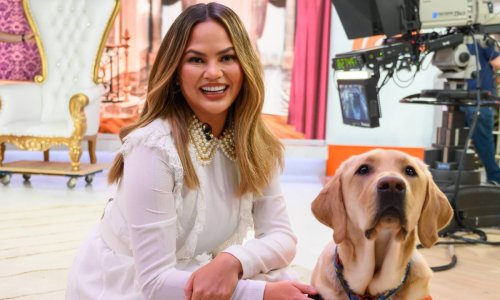 Chrissy Teigen swears by this $32 Mother's Day gift for dog moms