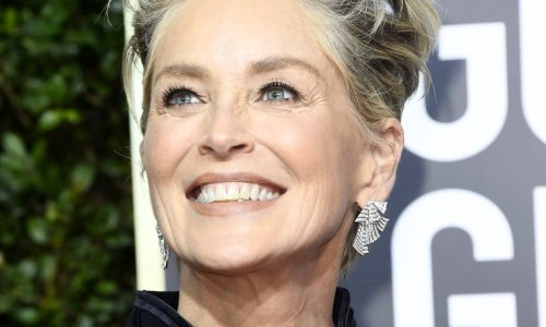 Sharon Stone is a work of art in her latest swimsuit photo - quite literally