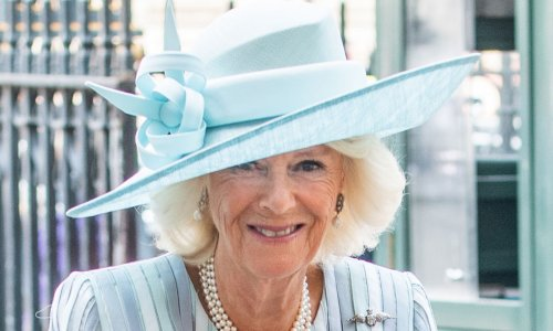 Duchess Camilla is a vision in stripes for London outing with Prince Charles